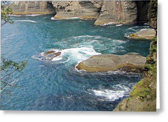 Cape Flattery Greeting Cards - Neah Bay at Cape Flattery Greeting Card by Roger Reeves  and Terrie Heslop