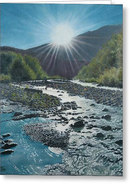 Sun Baker Greeting Cards - Near Mount Baker WA Greeting Card by Grant Ham