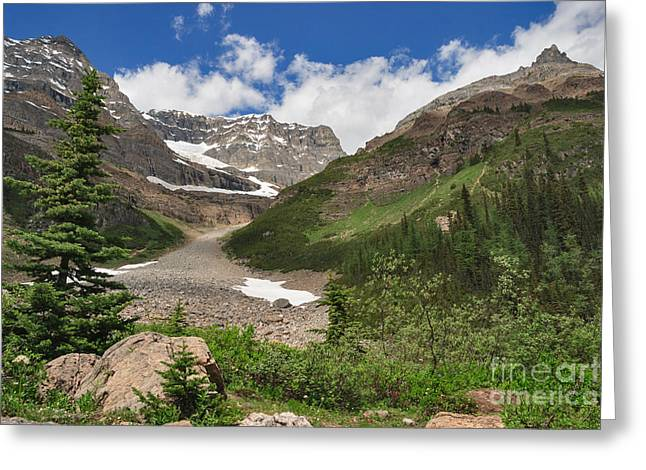 Whytes Lake Greeting Cards - Near the Teahouse Greeting Card by Charles Kozierok