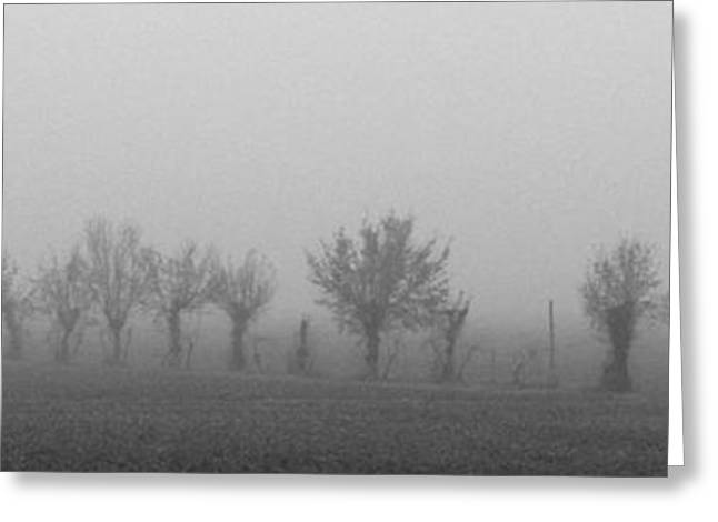 Nebbia Greeting Cards - Nebbia Greeting Card by Michele Messina