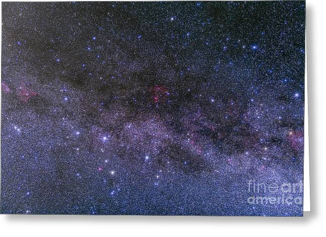 Double Cluster Greeting Cards - Nebulosity In The Constellations Greeting Card by Alan Dyer