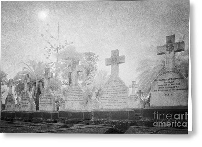 Cemetery Greeting Cards - Necropolis 03 Greeting Card by Colin and Linda McKie