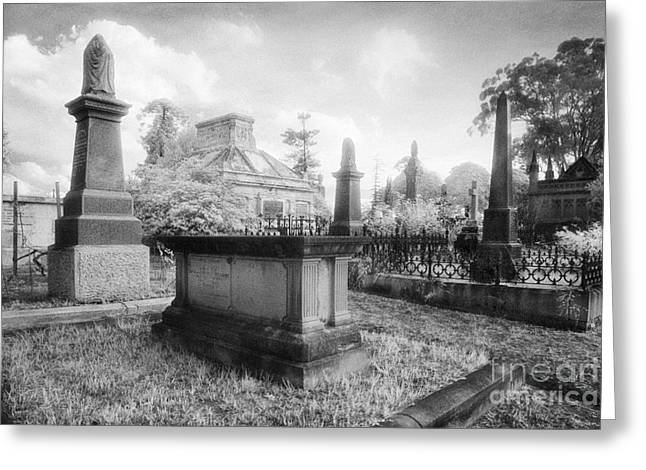 Black Cemetery Greeting Cards - Necropolis 08 Greeting Card by Colin and Linda McKie
