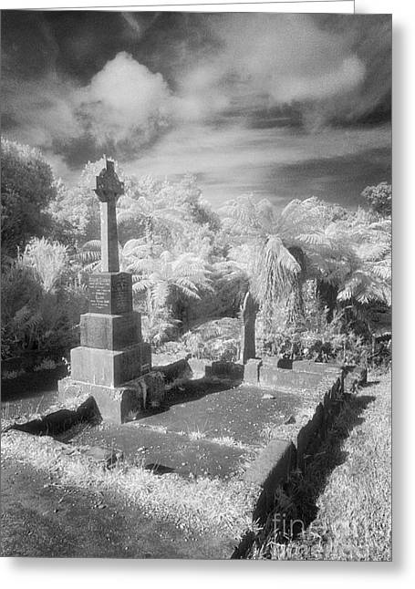 Black Cemetery Greeting Cards - Necropolis 13 Greeting Card by Colin and Linda McKie