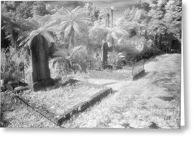 Black Cemetery Greeting Cards - Necropolis 14 Greeting Card by Colin and Linda McKie