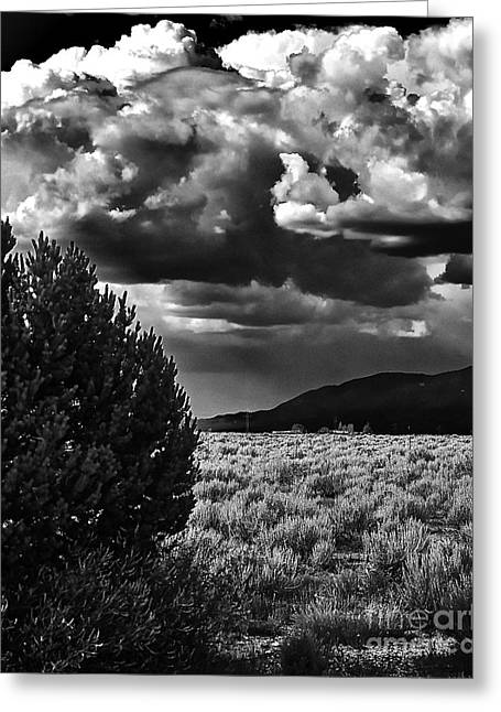 Taos Greeting Cards - Needed Rain III Greeting Card by Charles Muhle