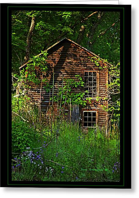 Clapboard House Greeting Cards - Needs Lawncare Greeting Card by John Stephens