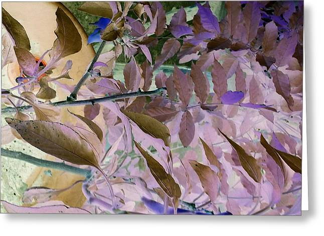 Terra Firma Greeting Cards - Negative Ground One Greeting Card by Debbi Chan