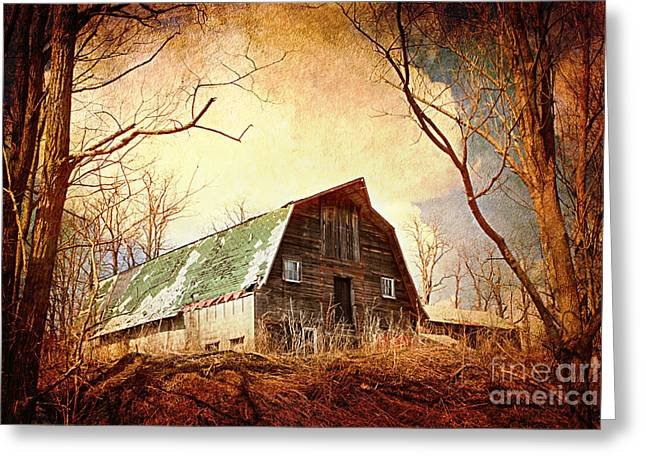 A New Focus Photography Greeting Cards - Neglected Greeting Card by A New Focus Photography