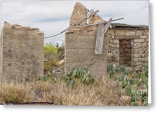 Neglected Dwelling Greeting Card by Erika Weber