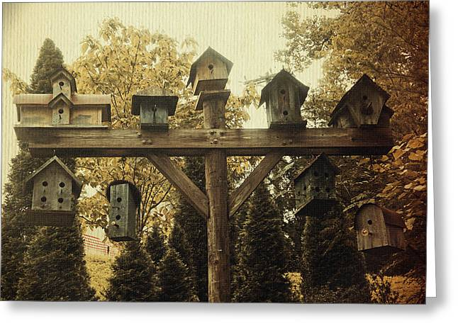 Birdwatcher Greeting Cards - Neighborhood Flock Greeting Card by Laurie Perry