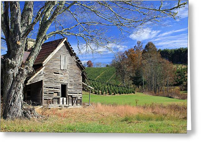 Cullowhee Greeting Cards - Nells house Greeting Card by Jennifer  Robin