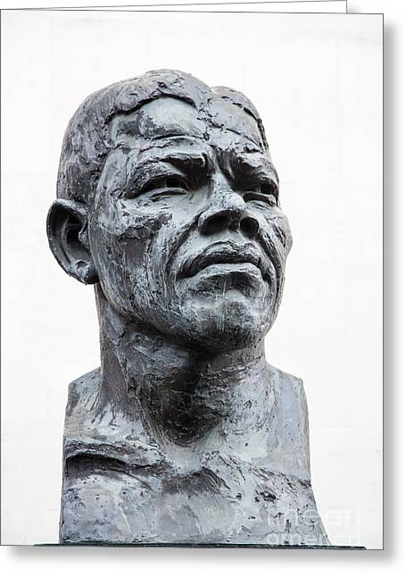 Continent Greeting Cards - Nelson Mandela statue Greeting Card by Jane Rix