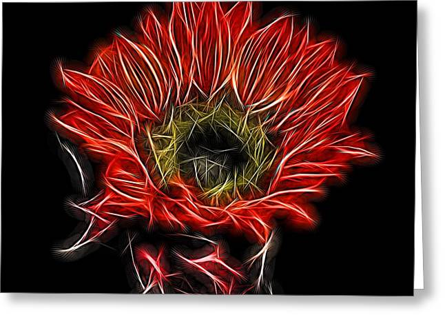 Interior Still Life Digital Greeting Cards - Neon Red Sunflower Greeting Card by Judy Vincent