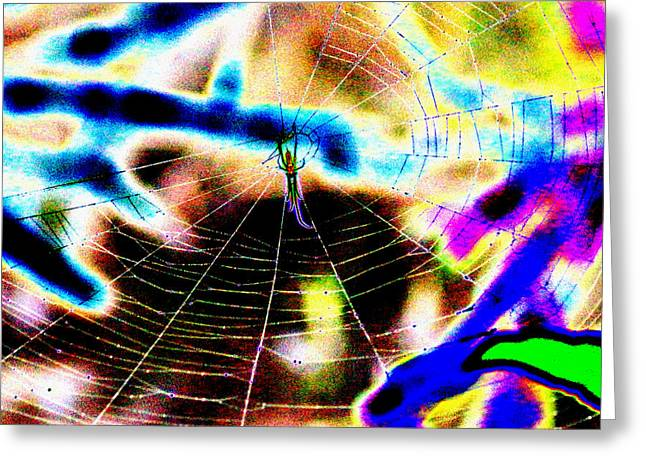Kim Pate Greeting Cards - Neon Spider Greeting Card by Kim Pate