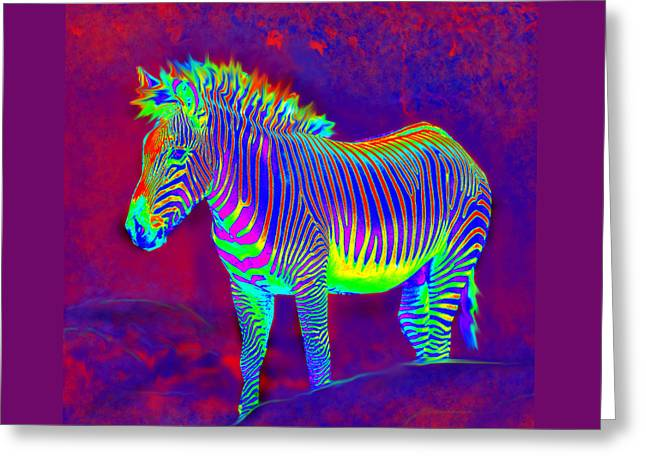 Neon Zebra Greeting Card by Jane Schnetlage