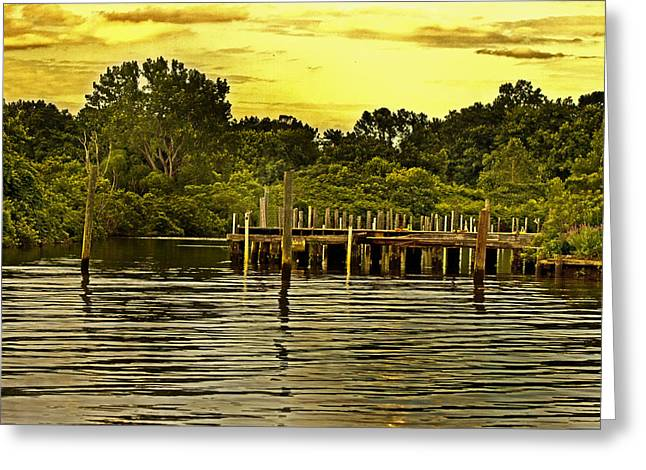 Dunk Greeting Cards - Neshaminy State Park Greeting Card by Tom Gari Gallery-Three-Photography