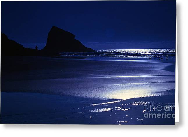 Beach At Night Greeting Cards - Neskowin Beach by Moonlight Greeting Card by Rick Bures