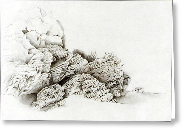 Rocks Drawings Greeting Cards - Nessebar rocks Greeting Card by Marina Kolchagova