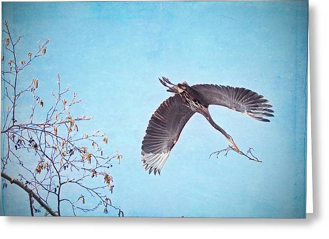 Bare Trees Mixed Media Greeting Cards - Nesting Heron Greeting Card by Peggy Collins