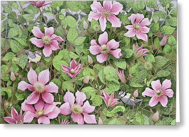 Tit Greeting Cards - Nesting In Clematis Oil On Canvas Greeting Card by Pat Scott