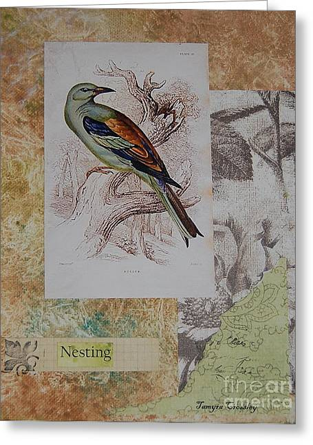 Nature Study Mixed Media Greeting Cards - Nesting Greeting Card by Tamyra Crossley