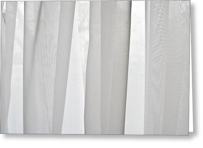 White Cloth Greeting Cards - Net curtain Greeting Card by Tom Gowanlock