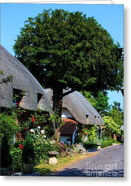 Terri Waters Greeting Cards - Nether Wallop Thatched cottages Greeting Card by Terri  Waters