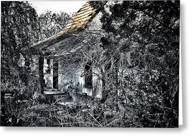 Selective Coloring Art Greeting Cards - Never Again... Greeting Card by Marianna Mills