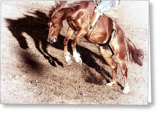 Bucking Horses Greeting Cards - Never Give In Greeting Card by Caitlyn  Grasso