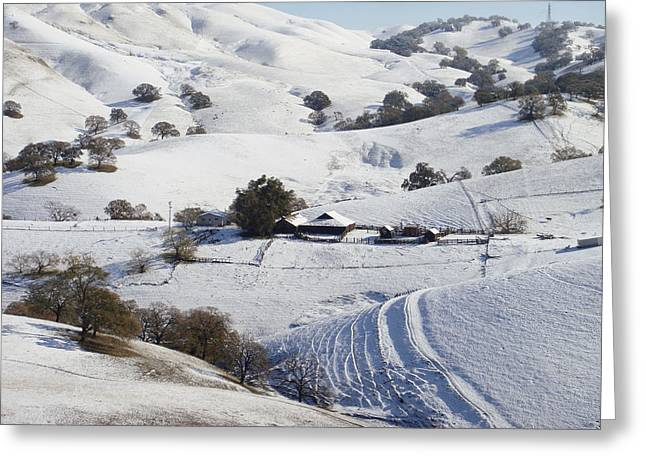Snow On Barn Greeting Cards - Never Snows in California Greeting Card by Donna Blackhall