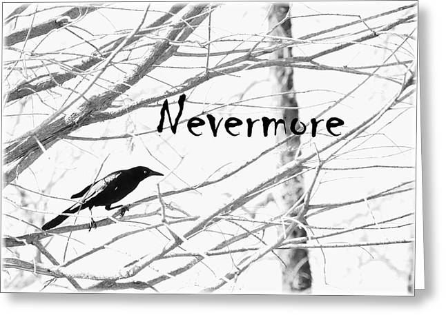 Angela Castillo Greeting Cards - Nevermore Greeting Card by Cherie Haines