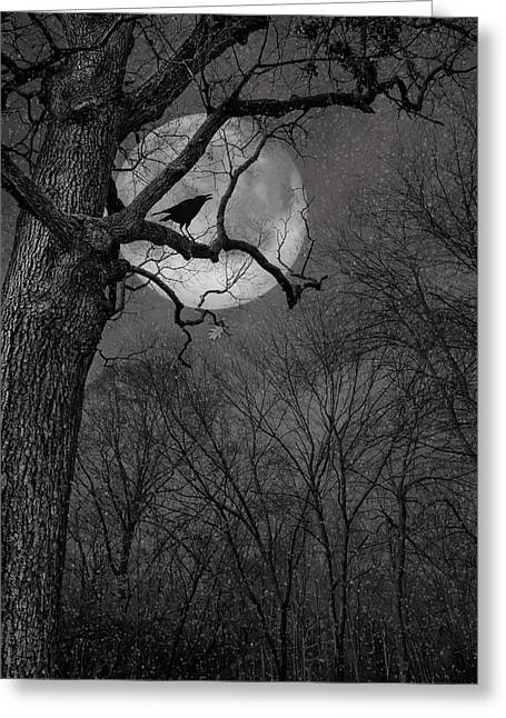 Gray Bird Greeting Cards - Nevermore Greeting Card by Robin-lee Vieira