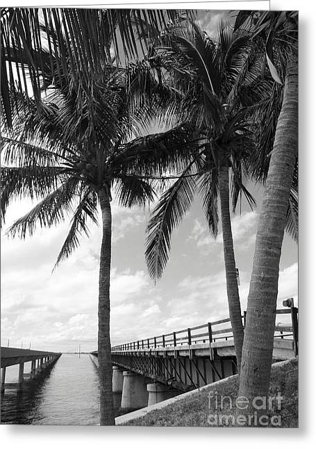 Bahia Honda State Park Greeting Cards - New And Old Bridge Overseas Highway Greeting Card by Christiane Schulze Art And Photography