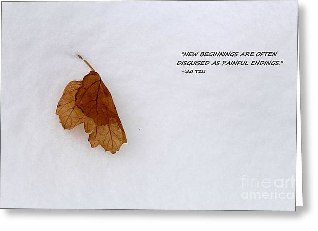 New Beginnings Greeting Cards - New Beginnings Greeting Card by Jimmy Ostgard