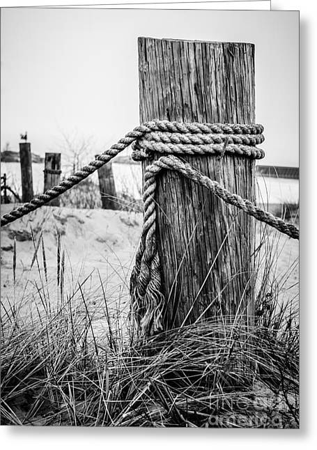 Rope Greeting Cards - New Buffalo Michigan Wooden Post and Rope Greeting Card by Paul Velgos