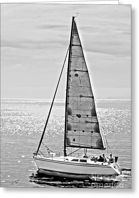 California Beaches Greeting Cards - New Dawn - Sailing into Calm Waters Greeting Card by Artist and Photographer Laura Wrede