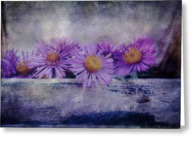 Aster Mixed Media Greeting Cards - New England Aster  Greeting Card by Todd and candice Dailey
