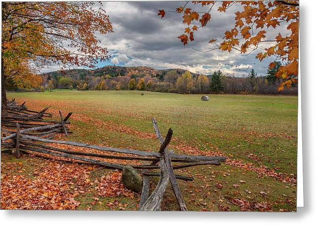 Geese Photographs Greeting Cards - New England Autumn Field Greeting Card by Bill  Wakeley