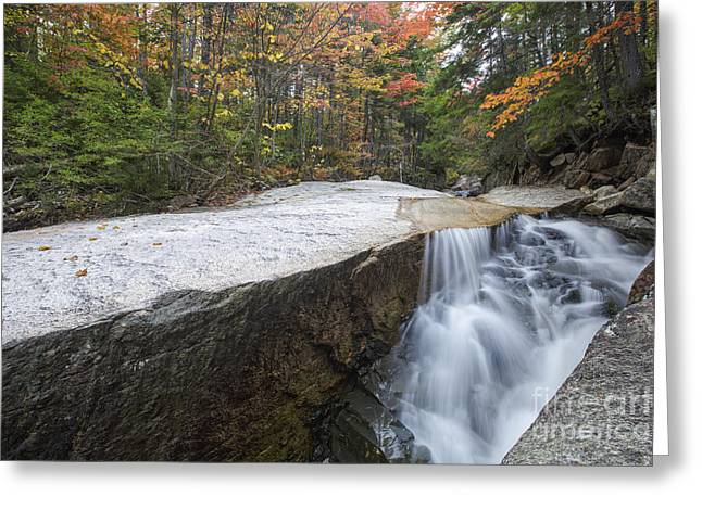 North Fork Greeting Cards - New England Autumn - White Mountains New Hampshire Greeting Card by Erin Paul Donovan