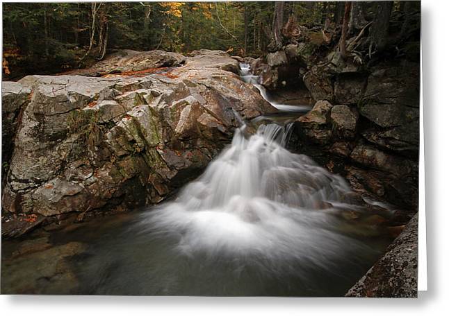 Beautiful Creek Greeting Cards - New England Nature  Greeting Card by Juergen Roth