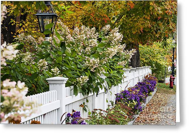 Grafton Vermont Greeting Cards - New England Picket Fence  Greeting Card by John Greim