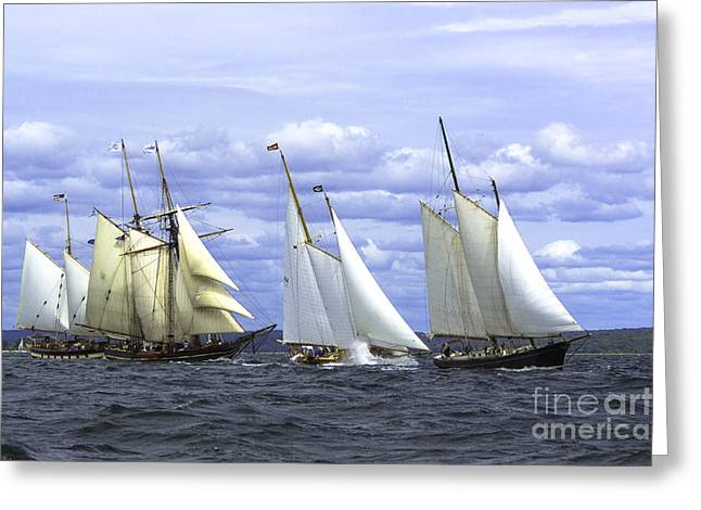 Masts Greeting Cards - New England Race Day Greeting Card by Joe Geraci