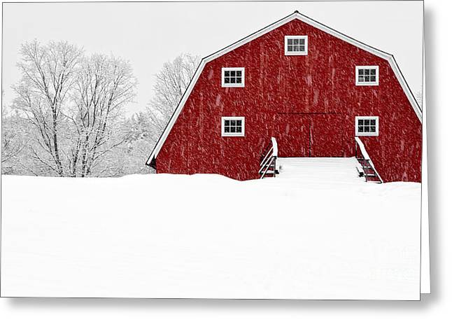 Dairy Cows Greeting Cards - New England Red Barn in Winter Snow Storm Greeting Card by Edward Fielding