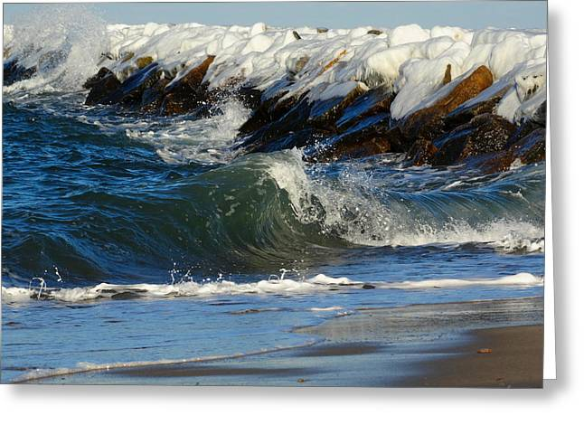 New England Winter Seashore Greeting Card by Dianne Cowen