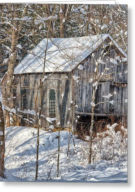 Snow On Barn Greeting Cards - New England Winter Woods Square Greeting Card by Bill  Wakeley