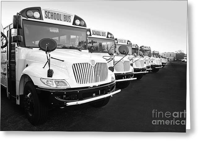 Bus Signs Greeting Cards - New Fleet Of International School Buses BW Greeting Card by Andee Design