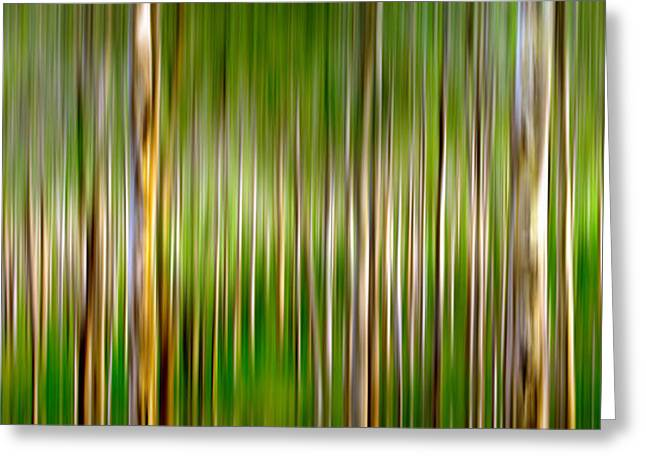 Nature Abstracts Greeting Cards - New Gangs Of The Old World Greeting Card by Az Jackson