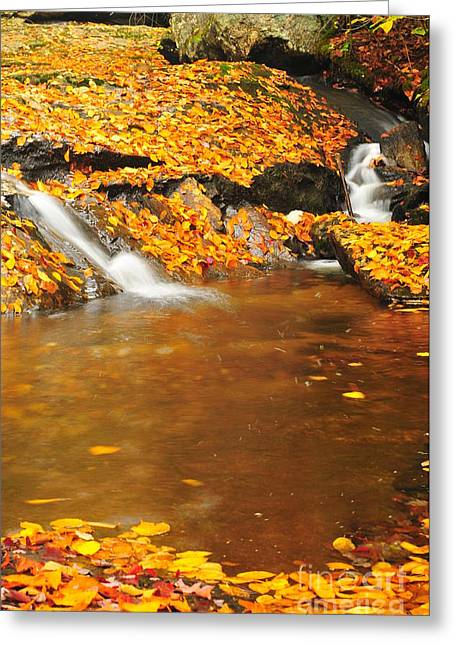 Catherine Reusch Daley Fine Artist Greeting Cards - New Hampshire Stream Greeting Card by Catherine Reusch  Daley