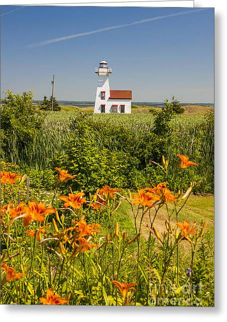 Red Tiger Greeting Cards - New London Range Rear Lighthouse Greeting Card by Elena Elisseeva
